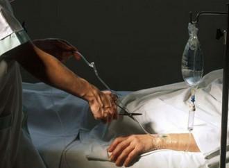 Killed to donate their organs: euthanasia upsurges